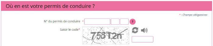 permisdeconduire.ants.gouv.fr